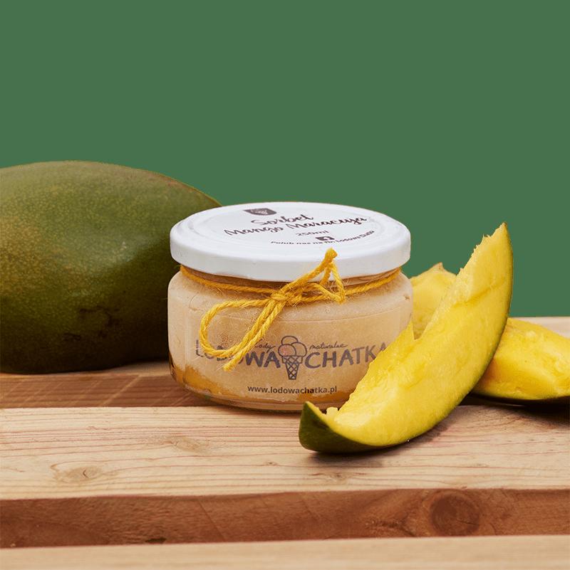https://lodowachatka.pl/wp-content/uploads/2020/05/14a-sorbet-mango-maracuja_D813052.png
